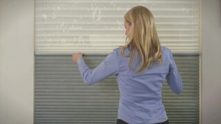 Blinds Com Signature Cell Shade With Cordless Trilight Day